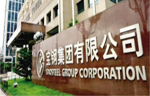 项目名称:宝钢集团有限公司
